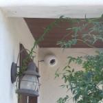 玄関先防犯カメラ1